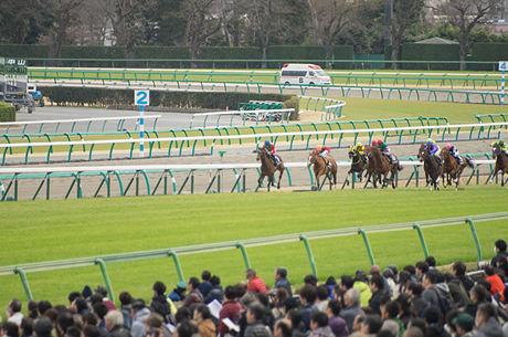 4コーナーの手応えで勝利を確信した馬のレースは?