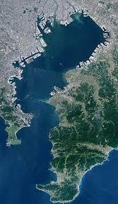 【画像】東京湾にクジラの死骸が浮かぶ!!!→ これはデカイ・・・・・