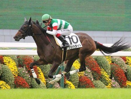 【競馬予想】[3]第77回優駿牝馬(オークス)(GI)