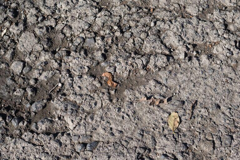 天目山のある村で、そこでは近年まで火葬場がなく土葬だった。