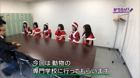 【乃木坂46】ニワトリにビビりまくる高山www【ガクたび】