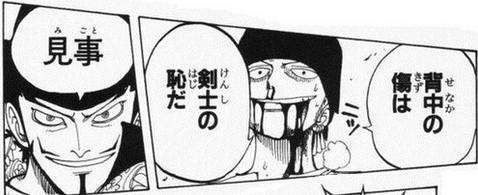 【画像】ゾロ「背中の傷は剣士の恥だ」 → 実際に背中に傷が付いたゾロを御覧ください