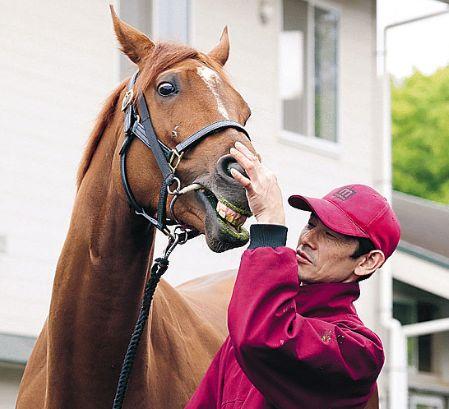 【競馬】ラッキーライラックの助手「アーモンドアイはそこまでの化け物ではないと思う」