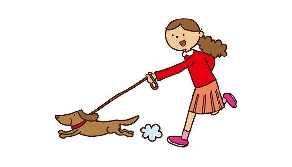 スペインでご近所に貸し出されまくった犬が散歩の過労で倒れる
