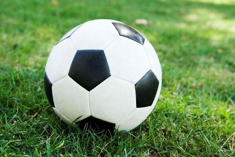おっ!目の前にサッカーボールあるやんけ! → よく見たらwwwwwwwww