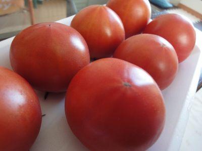 あきる野トマト_400