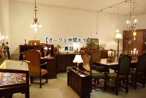 DSC_0386-1
