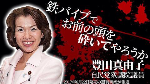暴言吐いた豊田議員の経歴wwwww