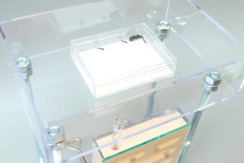 蟻マシーン2号ミニ特大エサ場付き組み立て方法