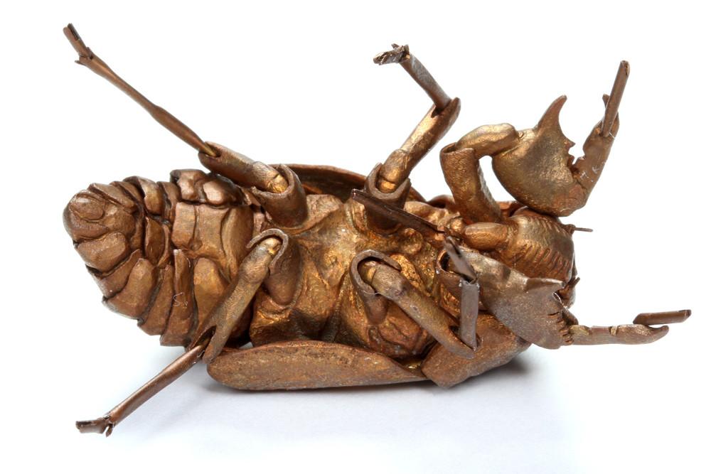 ありんこ日記 AntRoom:金属製の虫!?自在置物とは