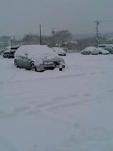 いやなんかもうすごい雪だらけ