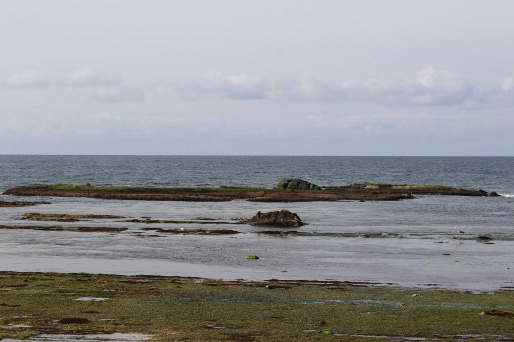アサリ浜沖の岩