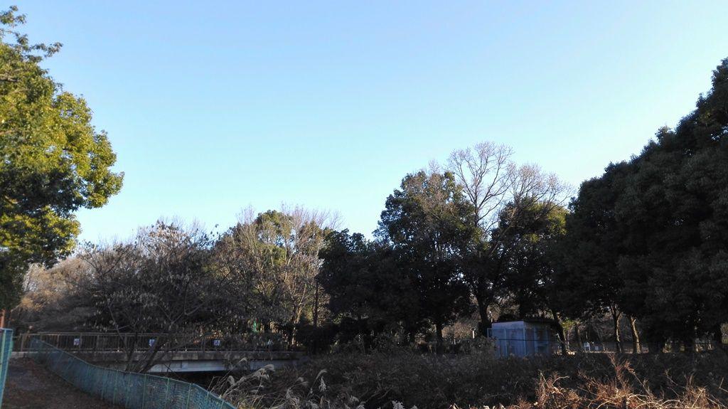 2朝宮公園