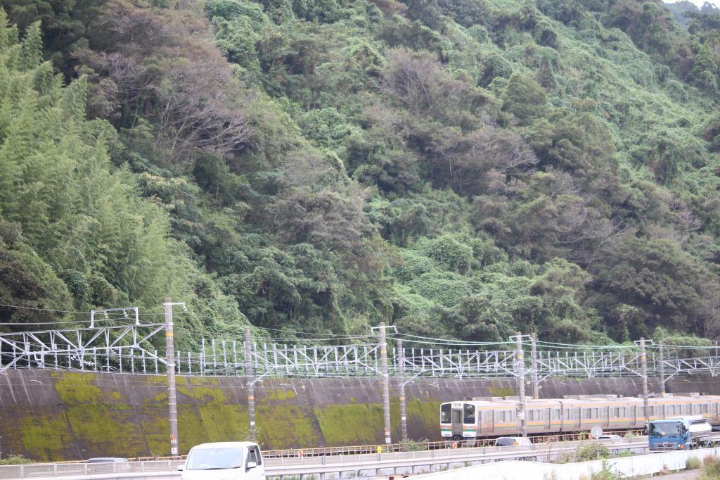 東海道線が来ます