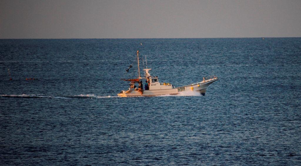 17シラス漁船