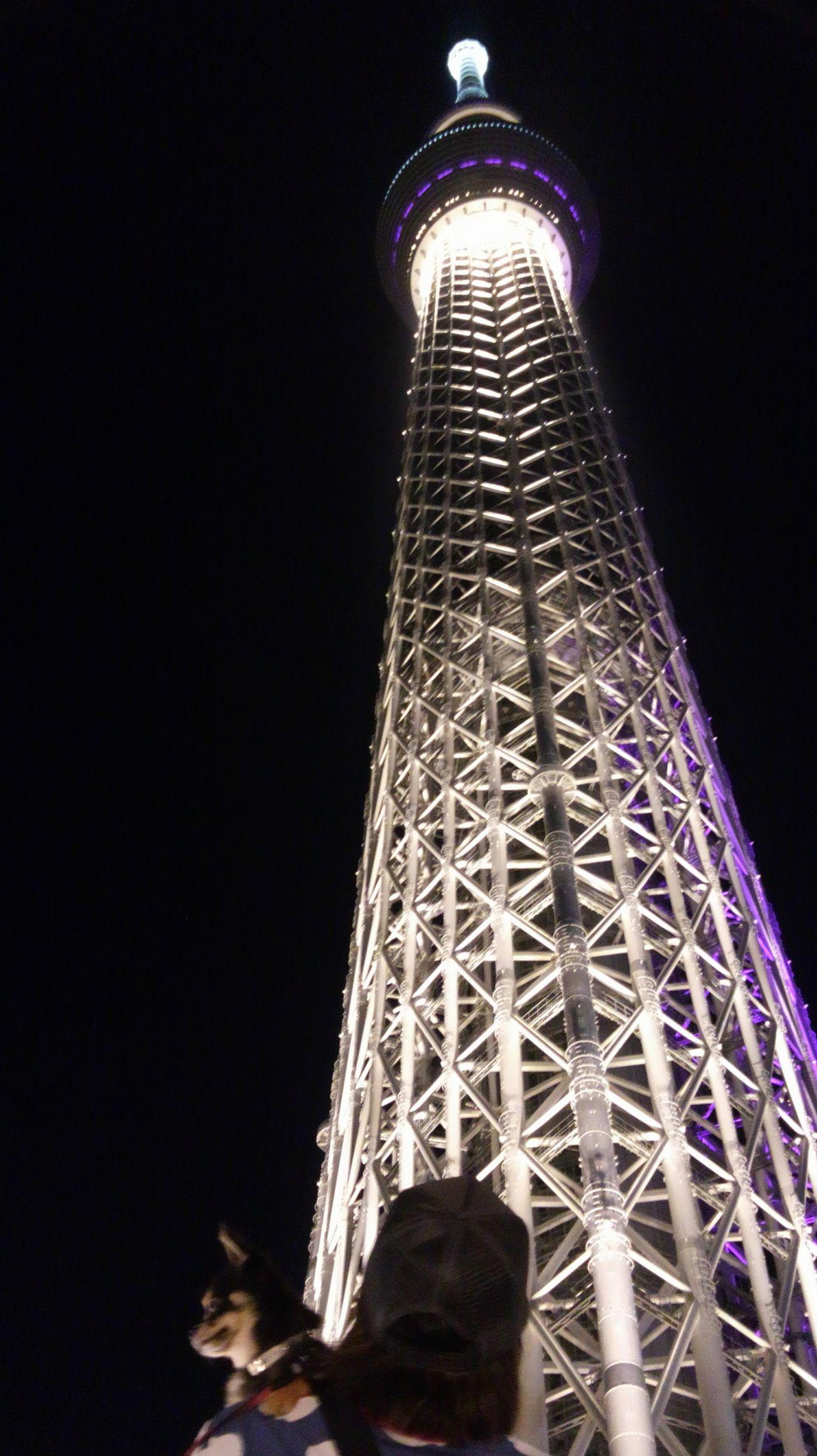 渡辺啓の画像 p1_19