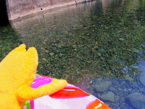 フモフモさん お散歩ブログ 滝畑湖畔バーベキュー場