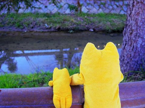フモフモさん お散歩ブログ 叡山電鉄