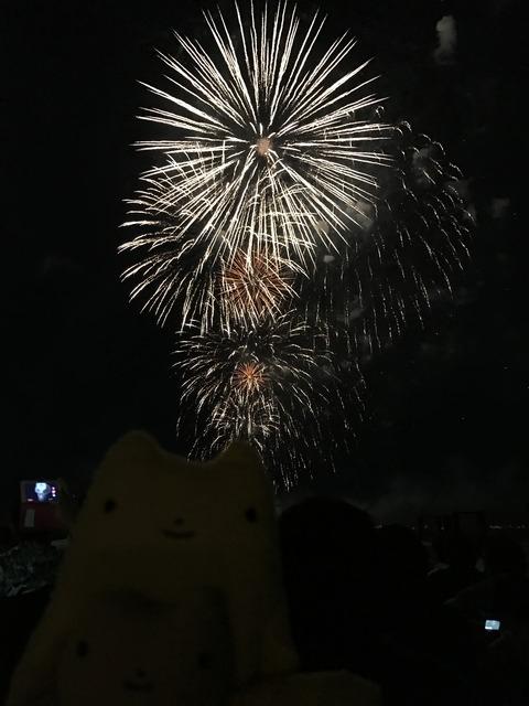 フモフモさん お散歩ブログ びわ湖大花火大会 2017