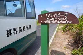 喜界島 (186)ハワイビーチ