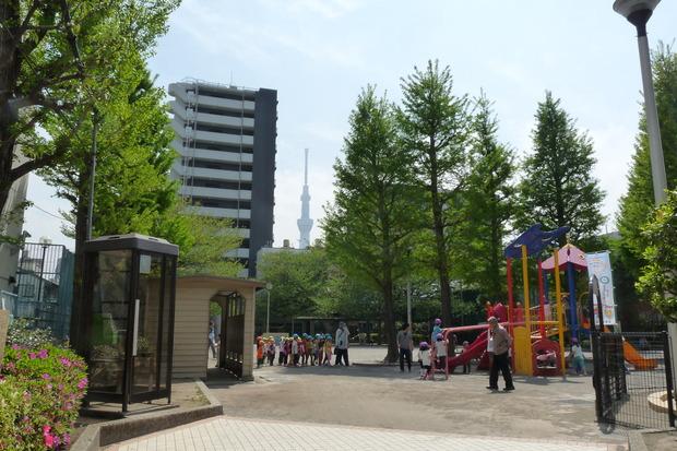 千束小学校 (8)