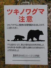 054つきのわ熊出没