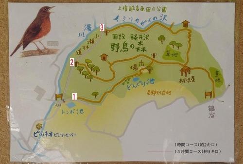 002野鳥の森図a