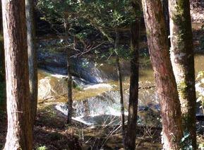 026濃溝の滝
