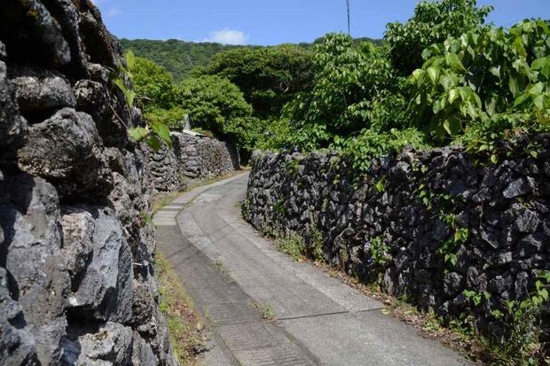 喜界島 (232)