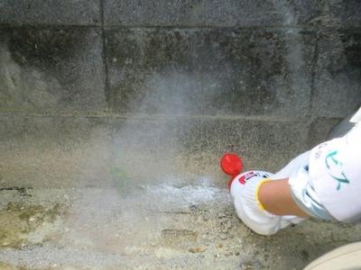 防蟻剤散布2