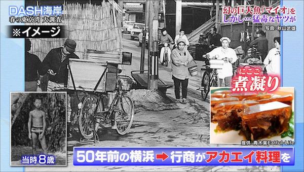 20190526akaei003