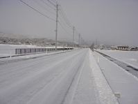 冬道2201