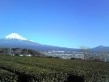 ぴのん 富士山