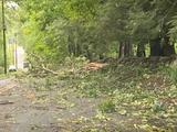 ハリケーン被害