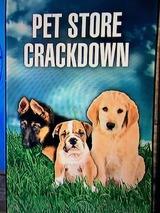 pet shop01