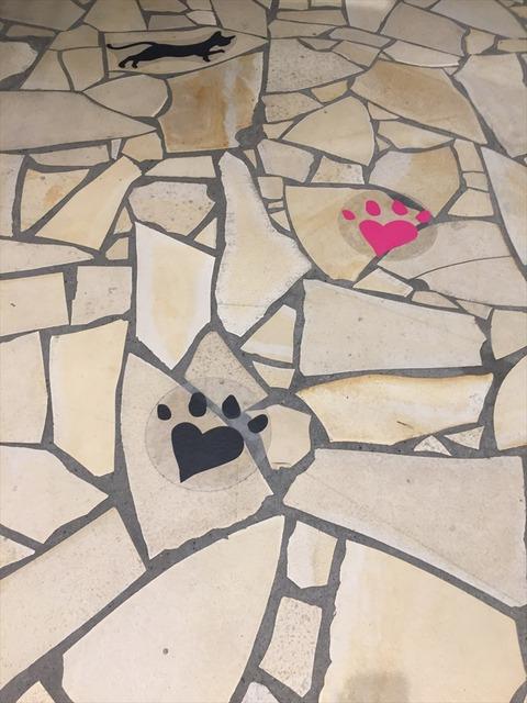 wacca猫の世界 足跡
