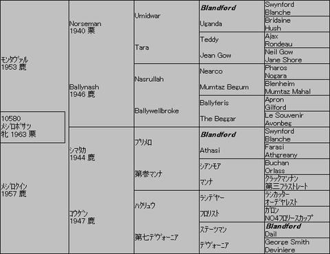 メジロボサツ 5代血統表