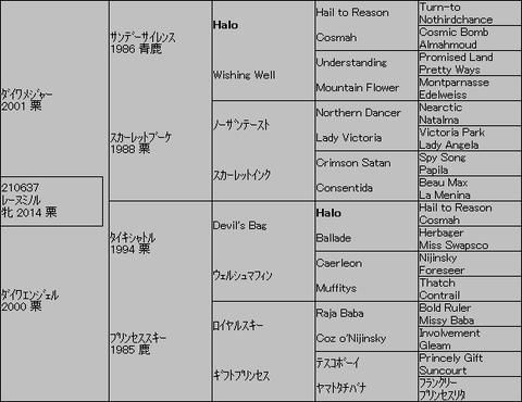 レーヌミノル5代 桜花賞