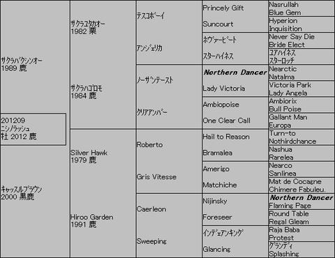 ニシノラッシュ5代血統表