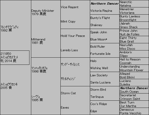 メイショウカズヒメ5代血統表
