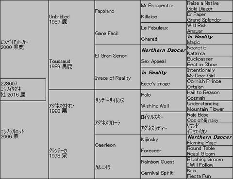 ニシノイタダキ5代血統表