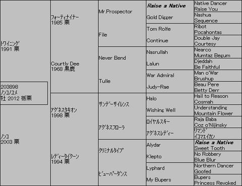 ノンコノユメ5代血統表