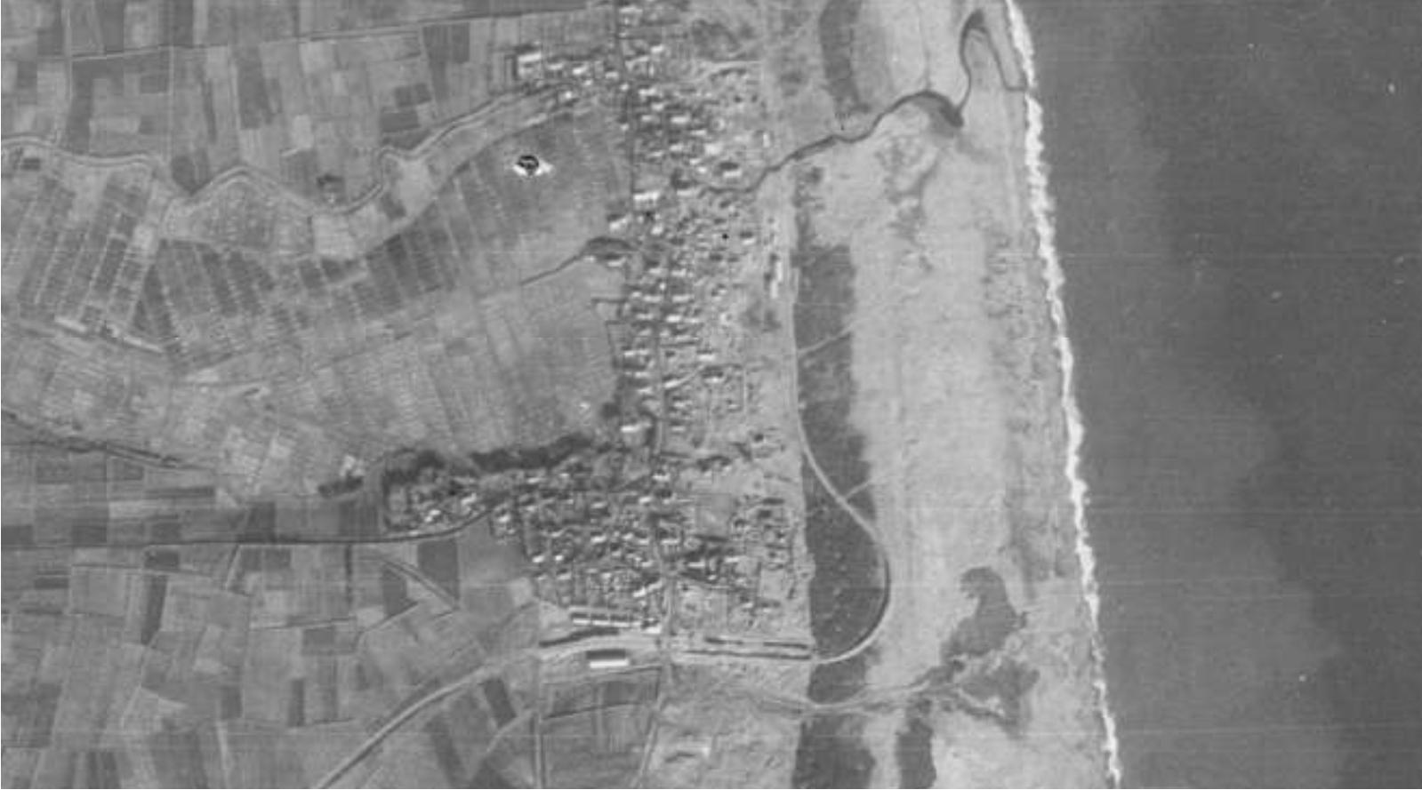 5thriver1947