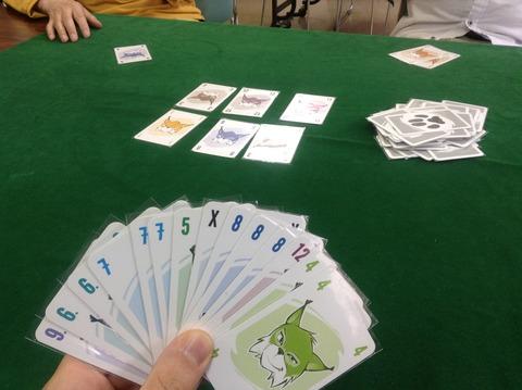 七戸ゲーム会150530 (13)