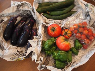 畑の夏野菜と牛肉の揚げ浸し。