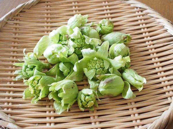 ふきのとうの天ぷら&アスパラ菜のオリーブオイル炒め。