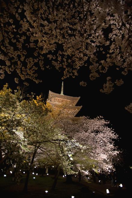 京都東寺2