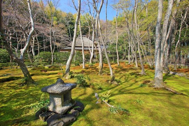 京都祇王寺