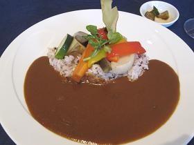 10種類の彩り野菜付コラーゲンカレー