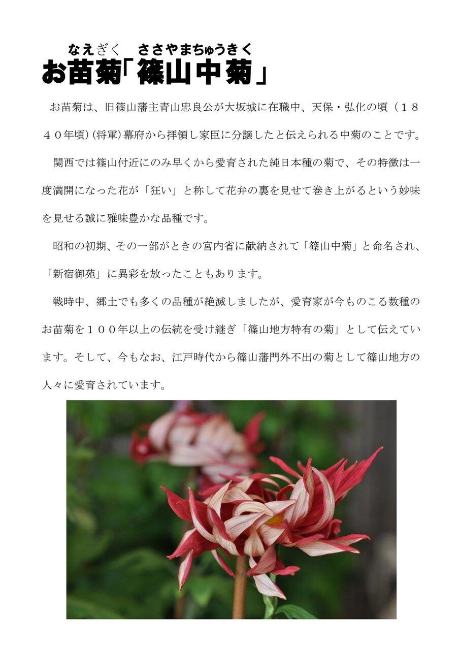 お苗菊021117_page-0001